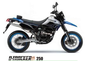 Dtracker 250
