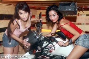 YamahaScorpio_model49