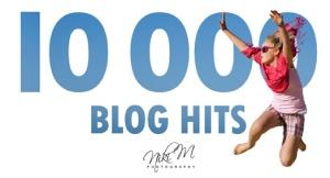 10000 Blog Hits