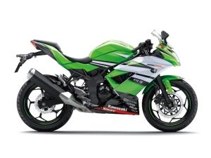 2015_Ninja250_RR-Mono-WSBK-RS001