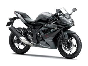 ninja-rr-mono-2014-silver