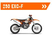 250 exc-f