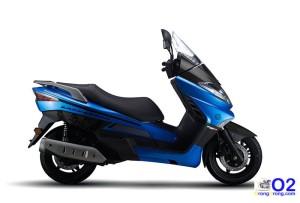 Zafferano- 250 blue