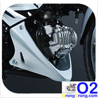 RS-125-New-Engine-Body-Color-Cowling-Cover
